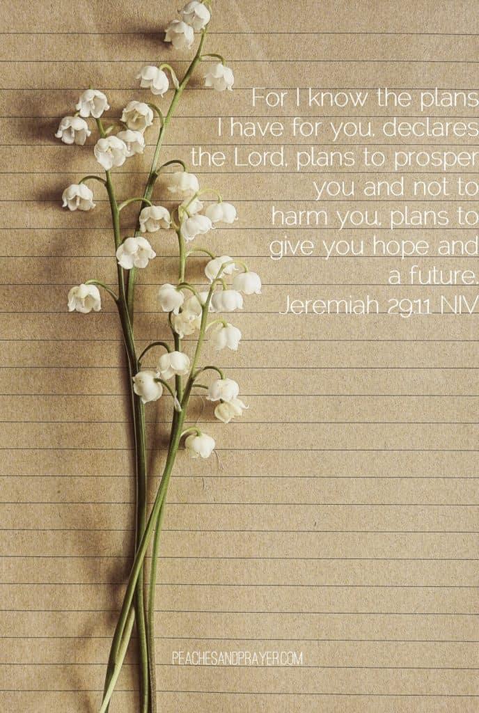 Jeremiah 29:11 Attributes of God